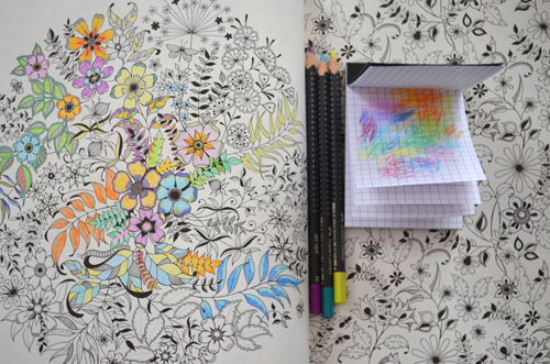 "My two-hours' worth of colouring in progress in Johanna Basford's ""Secret Garden"""
